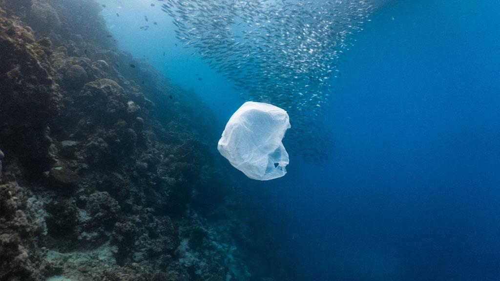 Ocean with Floating Plastic Bag